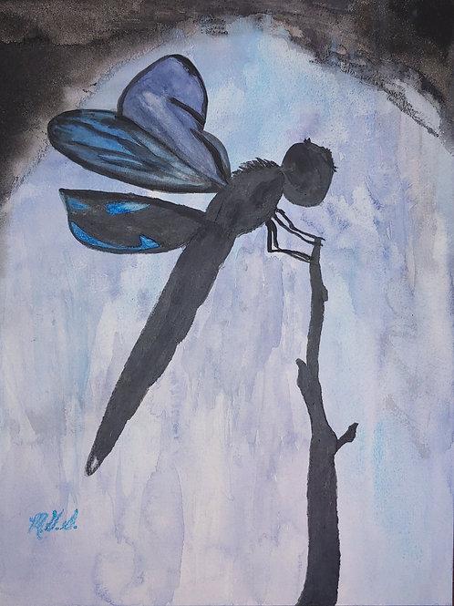Dragonflies for Em Blue