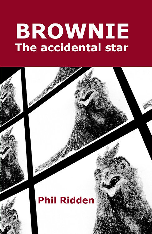 BROWNIE THE ACCIDENTAL STAR (Paperback)