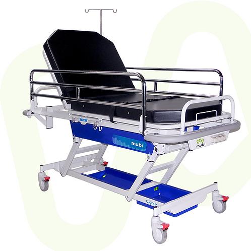 Stretcher Cignux Adjustable Height Ref.4312