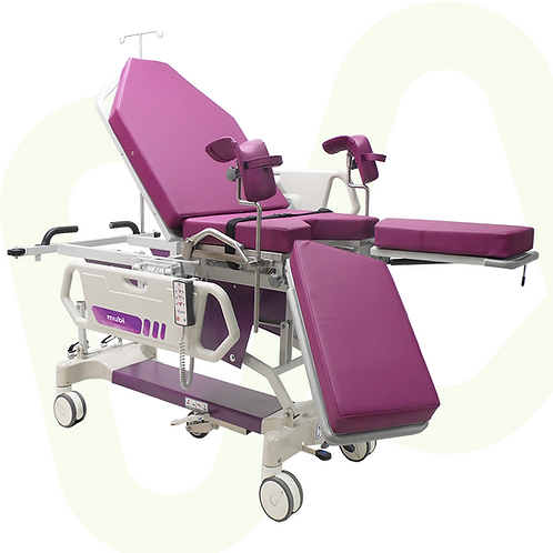 Electric Gynecological Stretcher Ixys Ref.4505