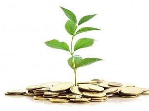 Finanza-sostenibile-632x421-k9D-U3060197