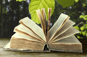 Book_Garden.jpg