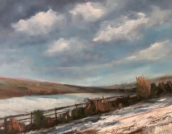 Sunlight on Snow at Colesbournee