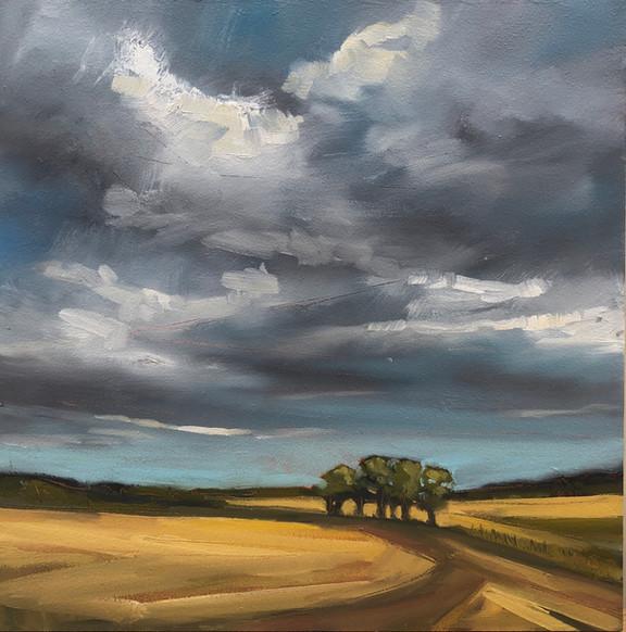 Stratton Trees