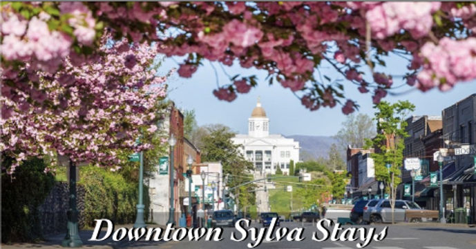 downtown-sylva-stays.jpg