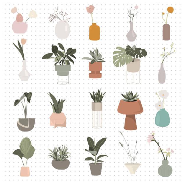 Plantas de casa