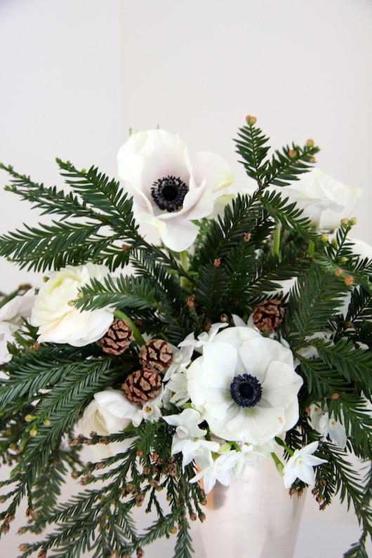 Blooms in Season: December | Sacramento Street