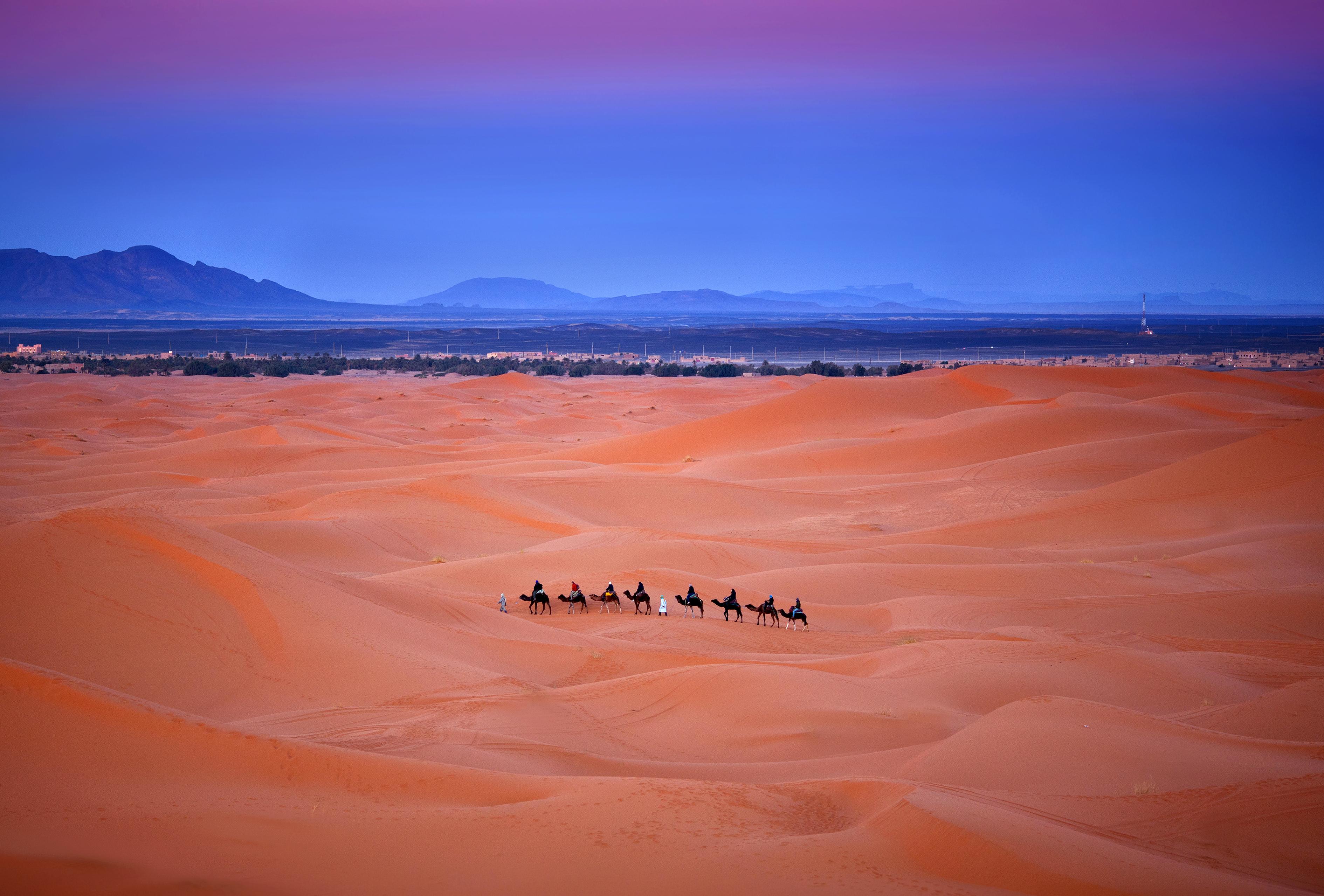 bigstock-Camel-Trekking-In-Western-Saha-149809940