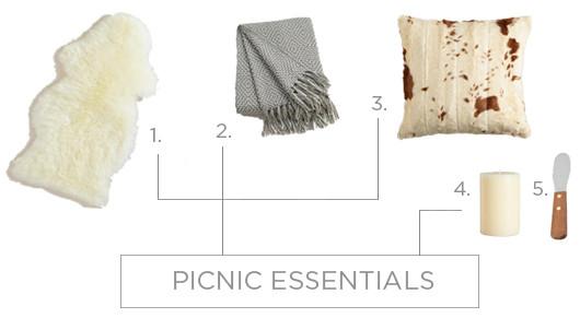 Picnic Essentials | Sacramento Street
