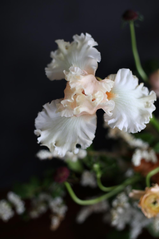 Blooms in Season 3