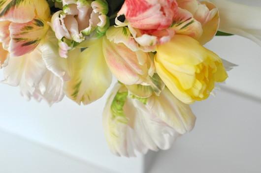 Blooms in Season | Sacramento Street 3
