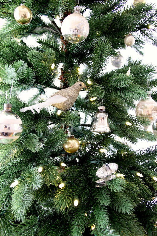 Christmas Tree | Sacramento Street 2