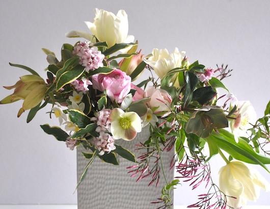 Blooms in Season: February 2014