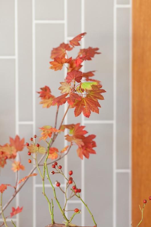 Blooms in Season: September | Natalie Bowen Designs