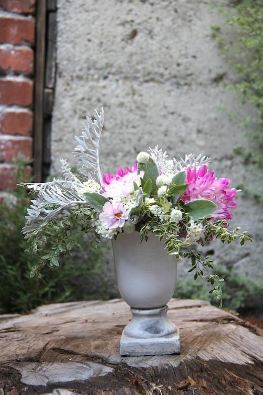 Blooms in Season   Sacramento Street