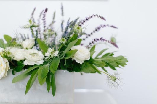 Blooms in Season : June| Sacramento Street