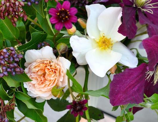 Blooms in Season: May