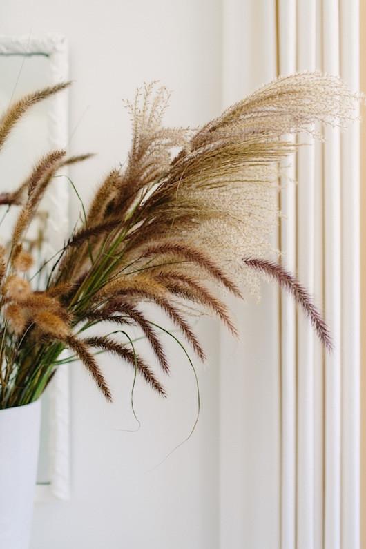 Blooms in Season - August | Natalie Bowen Design x Sacramento Street