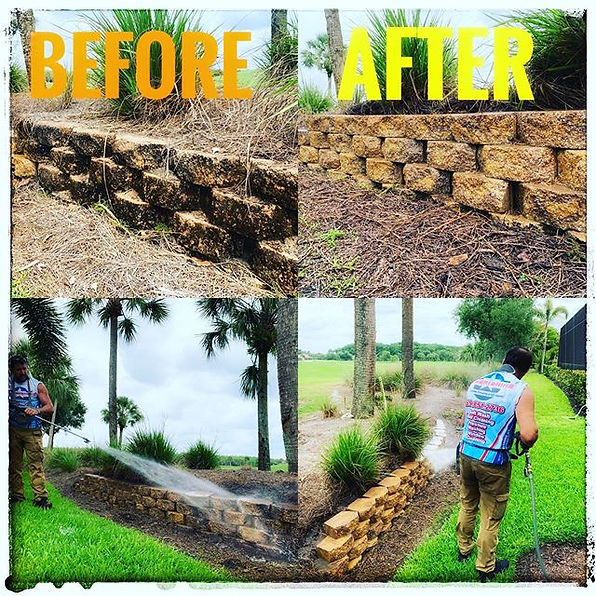 Stone Wall Cleaning ✅ Leave the power wa