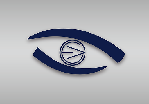 Eye-Vory Consulting PNG.png