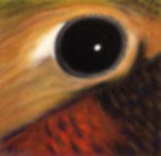 Paul Plante Bird