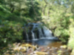 Ewart Davies - Falls on Afon Caefane
