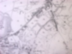 Part of Darlaston, showing Woods Bank. Early 19c map