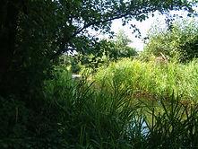 Kenfig Castle moat