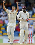 Cricket: taking a wicket