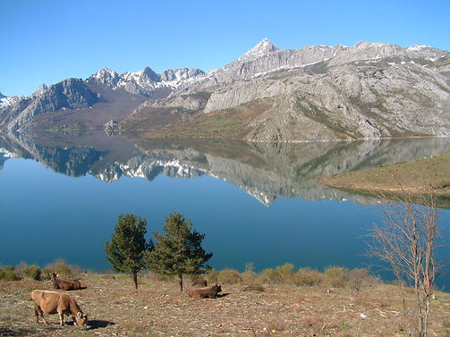 Ewart Davies - Reservoir at Riano, N Spain