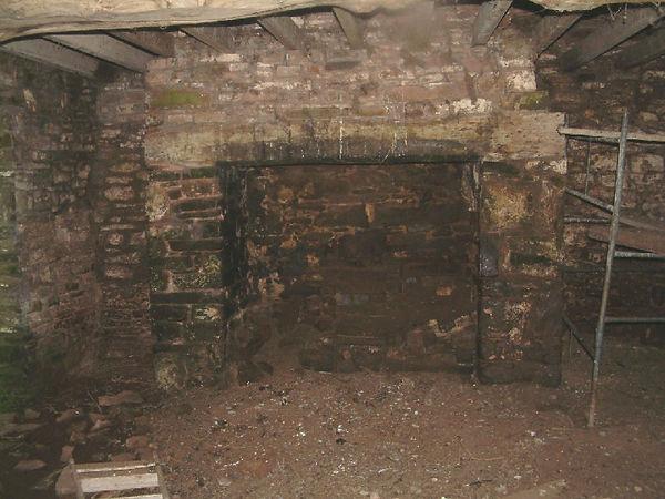 Pwll Uchaf farmhouse: fireplace