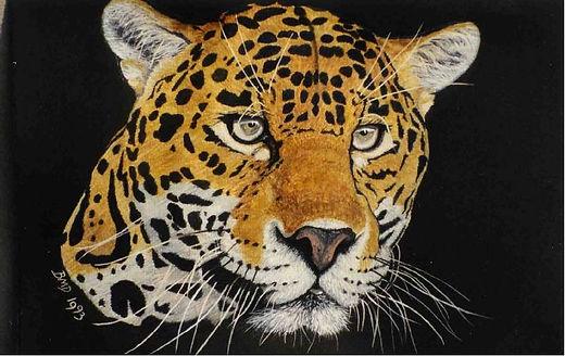 Brenda Davies- Leopard