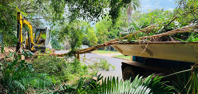 Tree clearing services Darwin.jpg