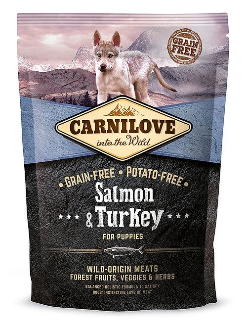Carnilove Adult Large Breed Salmon & Turkey  Лосось з індичкою для цуценят