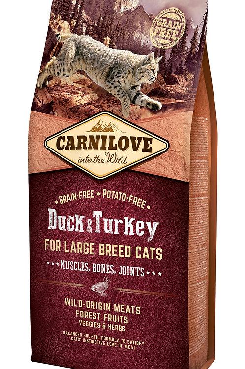 Carnilove Cat Duck & Turkey Large Breed качка з індичкою 6kg