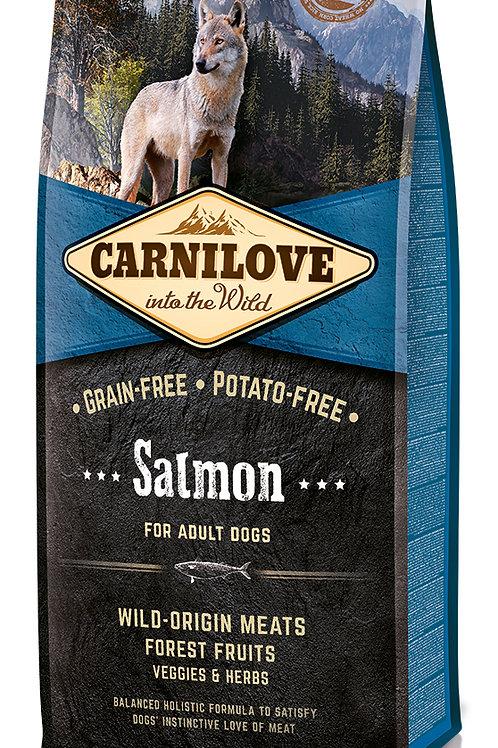 Carnilove Salmon Adult для дорослих собак зі смаком Лосося