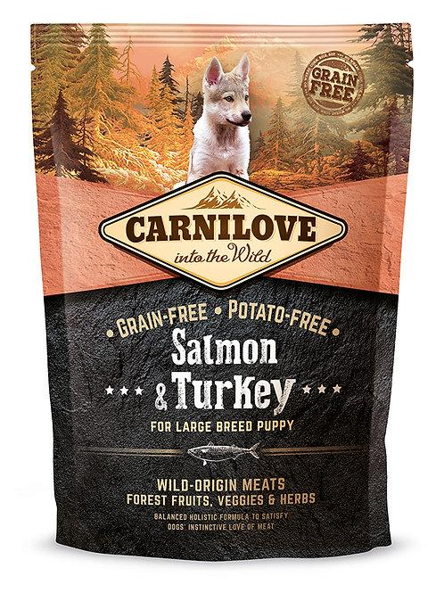 Carnilove Puppy Large Breed Salmon & Turkey для цуценят великих порід