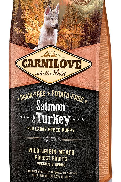 Carnilove Salmon & Turkey Large Breed Puppy для цуценят великих порід