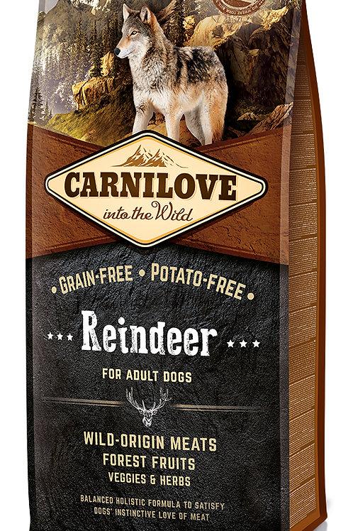 Carnilove Raindeer для дорослих собак з північним оленем
