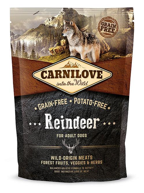 Carnilove Adult Raindeer для дорослих собак з північним оленем