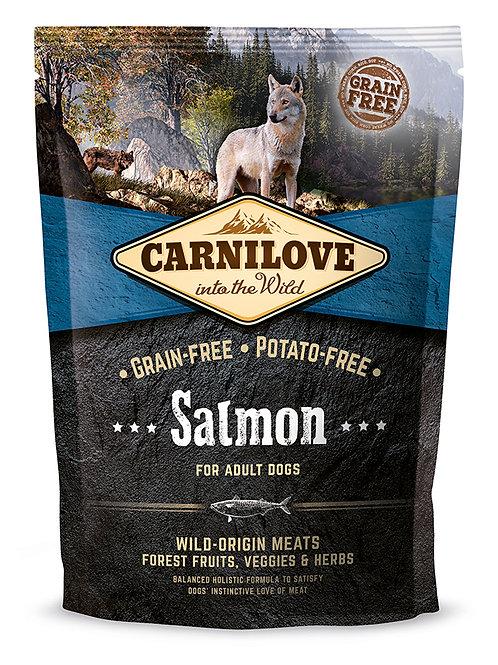 Carnilove Adult Salmon для дорослих собак з лососем