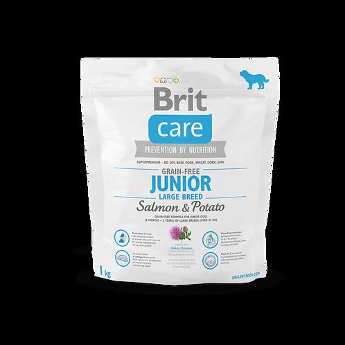 Brit Care Grain-free Junior Large Breed Salmon & Potato1kg