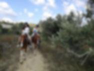 טיול סוסים זוגי. הכי רומנטי