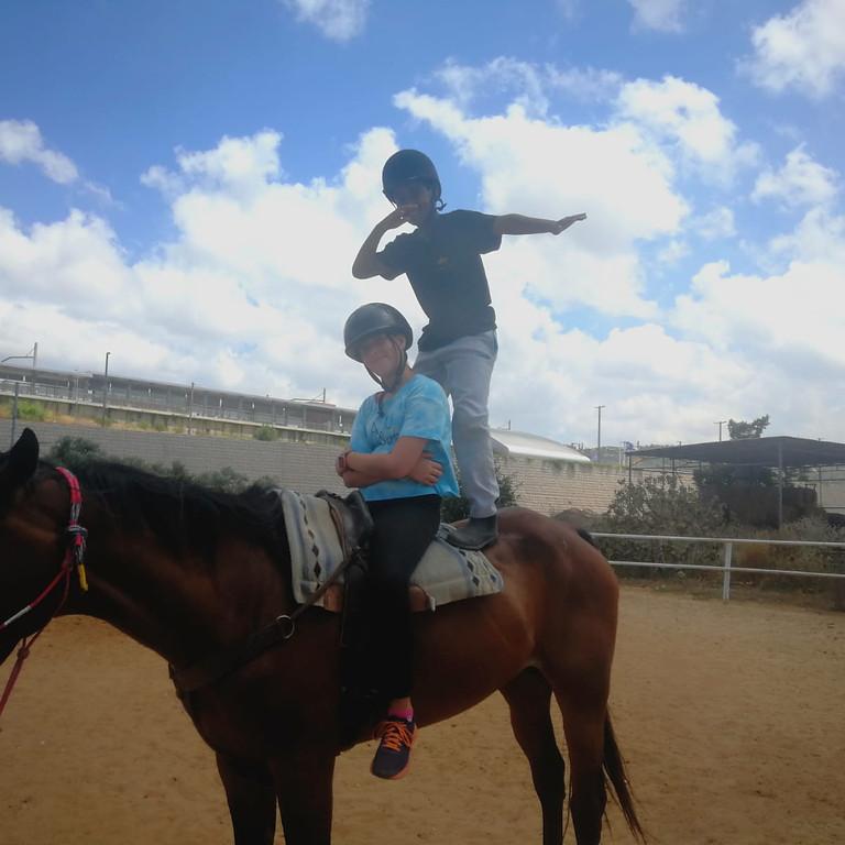 מחנה סוסים קאובוי קידס