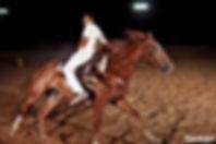 אלקנה סולימן מדריך ומטפל בסוסים ובאנשים.