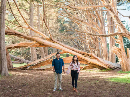 Candyce & Mike's Half Moon Bay Engagement Session