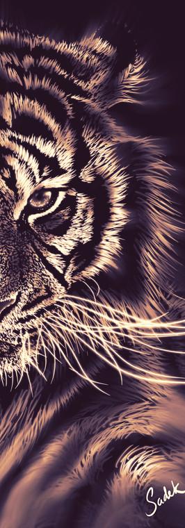 Tiger_Portrait V1 - Look 1 - mid res.jpg