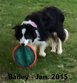 Bailey LaRussa Last Pic Jan 2015 RB text