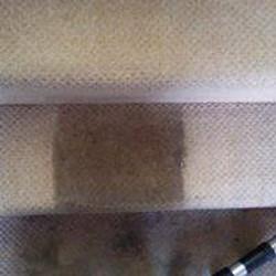 Carpet Cleaning Essex