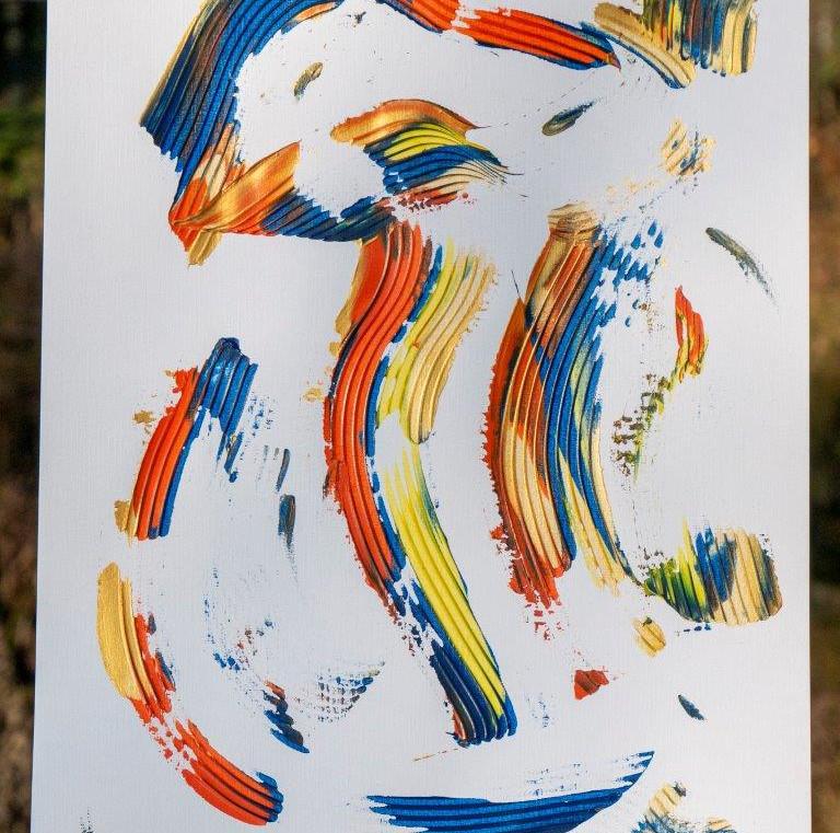 17 - Paradiesvogel - Ein Sternbild des Südh